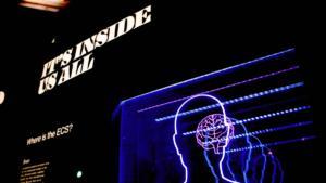 【2020年度版】「ウォーキング・デッド」全話を無料で視聴する方法を教えます【あらすじとキャストもおさらい】