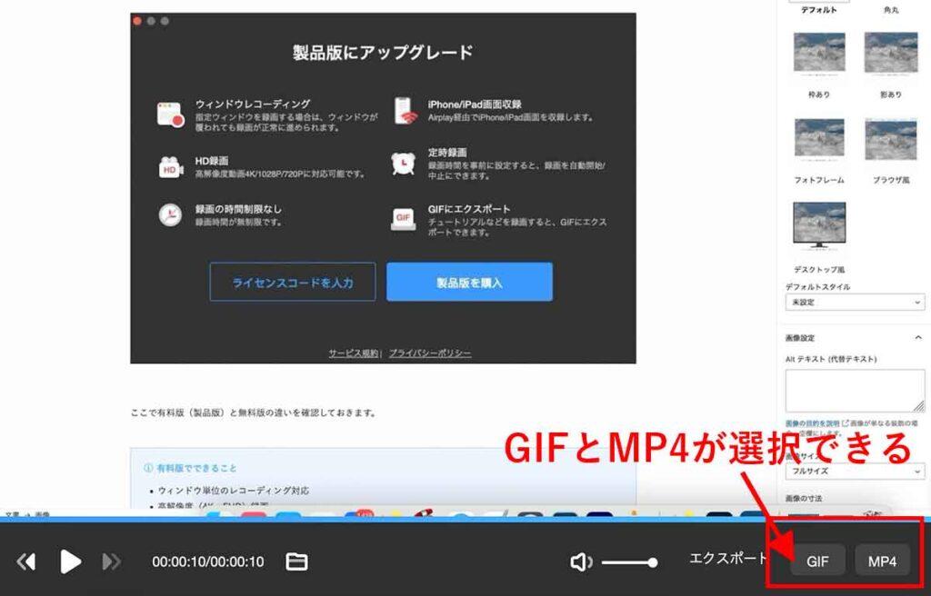 GIFとmp4